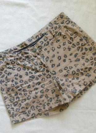 Леопардовые шорты котон