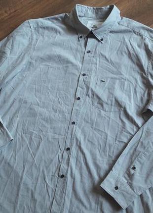 Новая брендовая рубашка lacoste 🦎оригинал!