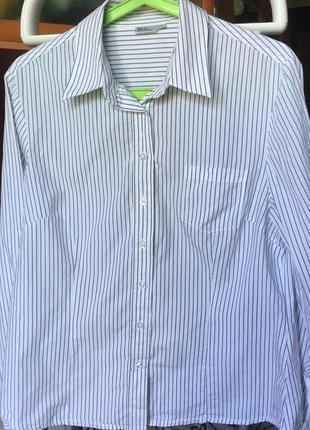 Рубашка в полоску blue motion