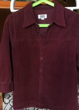 Бордовая рубашка cecil