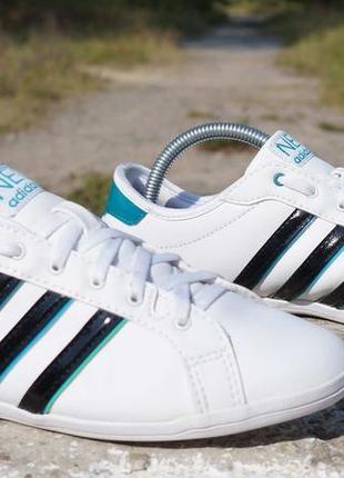 Шкіряні кросівки adidas neo label derby qt