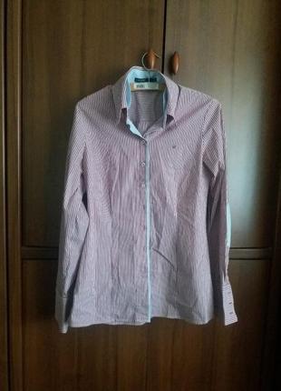 Рубашка качество cane &cane