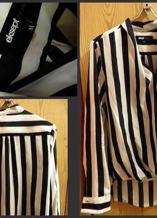 Полосатая стильная блуза зебра