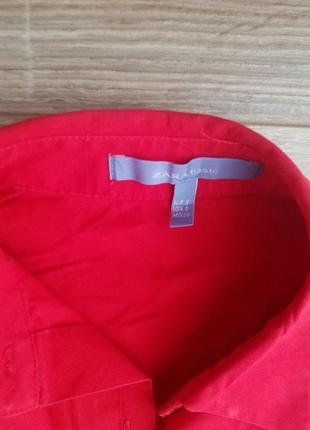 Насичена червона сорочка zara