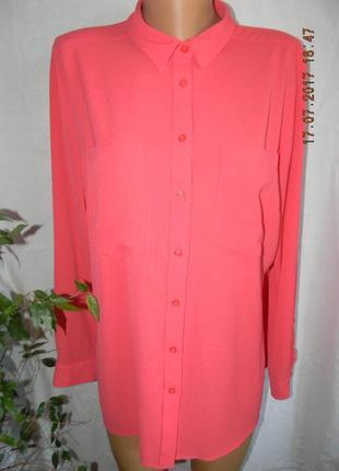 Блуза-рубашка караловая next