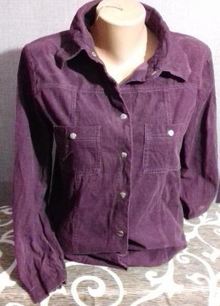Вильветовая рубашка