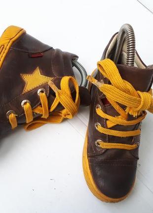 Ботинки shoesme голландия мальчику р.29-30/19см кожа в идеале деми