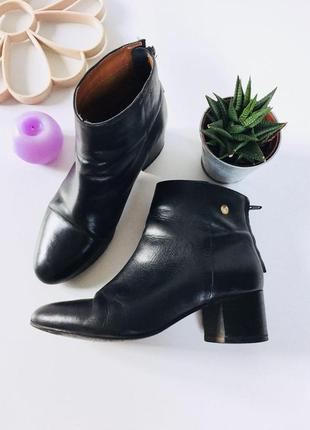 Стильные кожаные ботинки на среднем каблуке от topshop
