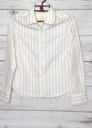Школьная белая рубашка в серебристую полоску