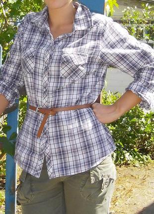 Рубашка в клетку. клетчатая рубашка. рубашка с длинным рукавом