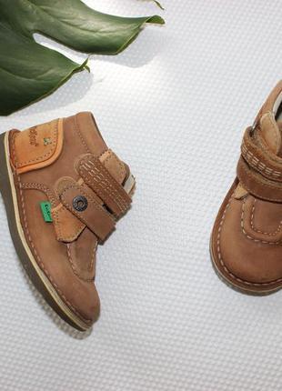 24 15см kickers кожаные ботинки высокие на липучках