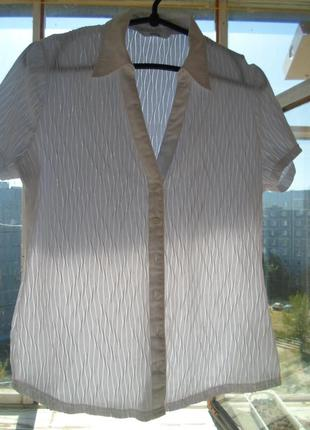 Блузка, рубашка marks & spencer