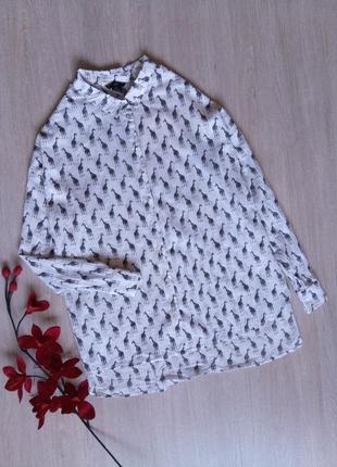 Рубашка/блузка h&m