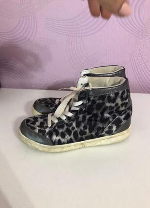 Кеды кроссовки леопард