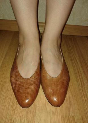 Немецкий бренд! классические туфли/балетки со змеиным принтом! стелька 27 см