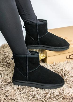 Шикарные женские зимние угги (ugg / сапоги / ботинки)