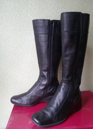 Демисезонные кожаные сапоги clarks 38-39/,кожаные сапоги на низком каблуке 38-39