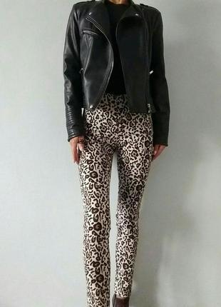 🔥улётные!!! трендовые джинсы/джеггинсы/animals принт