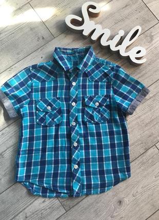 Рубашка тениска terranova