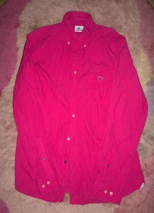 Рубашка lacoste размер 39 (м-л)