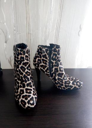 Леопардові чобітки esmara by heidi klum