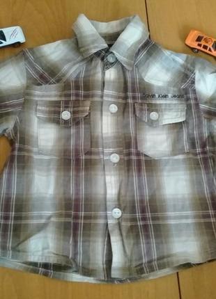 Стильная рубашка, кофточка