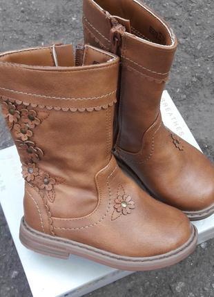 Сапоги ботинки деми1