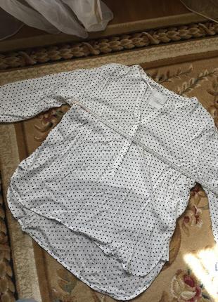 Шикарная светлая блуза в горох горошек блузка