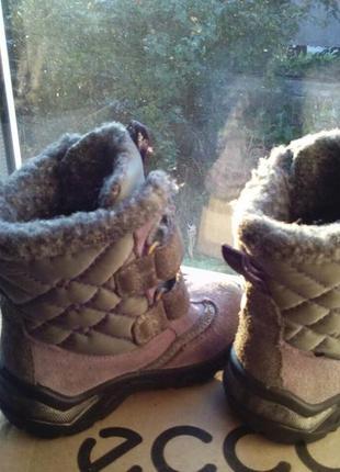 Зимние сапоги для девочки ecco3