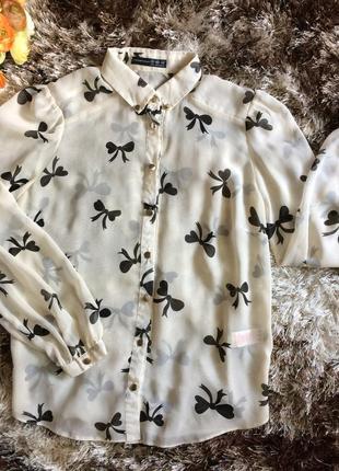 Красивая белая шифоновая рубашка блуза