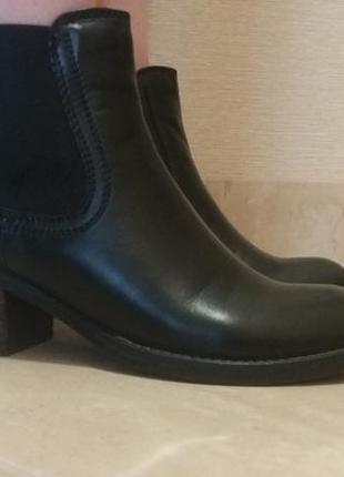 Ботинки,челси,черевики от cable