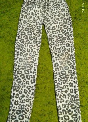 Леопардовые штаны скины