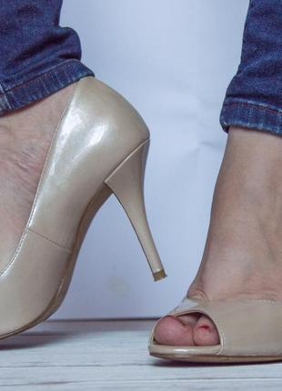 Туфлі enzo angiolini