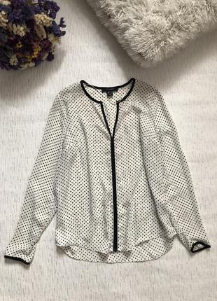 Блуза в мелкий горошек 8- размер