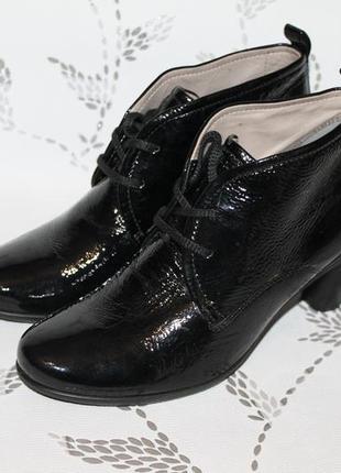 Кожаные ботинки ecco 39 размер 25,5 см стелька