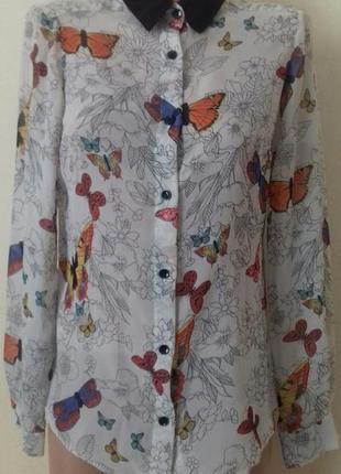 Шифоновая блуза с принтом бабочки papaya