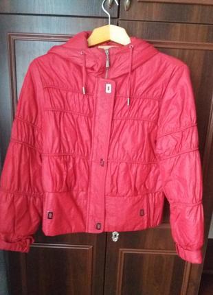 Курточка осінь-зима