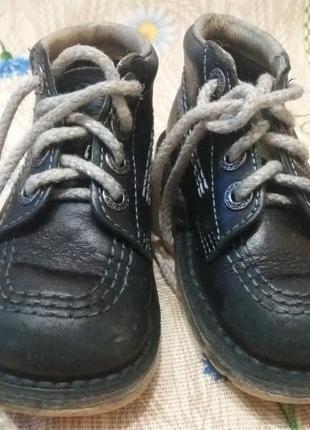 Демисезонные ботинки kickers 24 размера,
