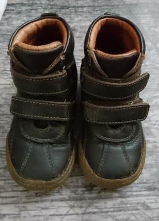 Ботиночки chicco 24р