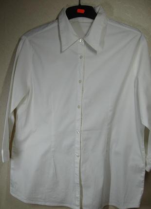 Рубашка хлопок стрейч