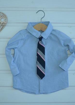 6-9 мес, рубашка с галстуком,h&m