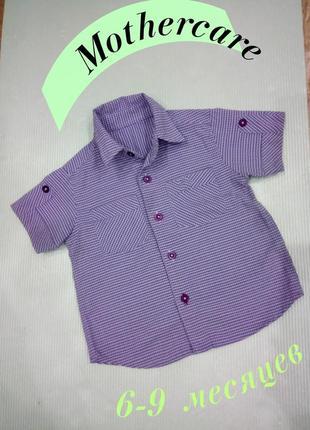 6-9 м шведка, рубашка с коротким рукавом mothercare