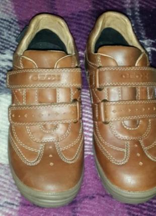 Туфли кожанные geox