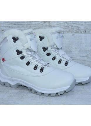 Женские зимние ботинки baas, р-р 38, 39, 41
