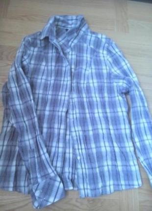 #красивейшая рубашка l/хl