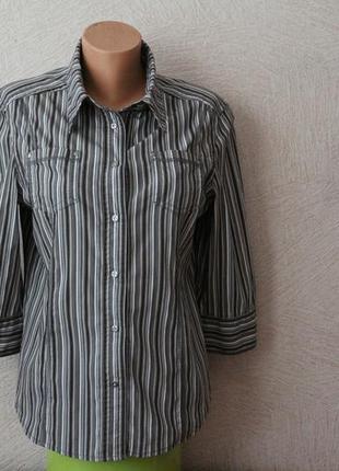 Cecil- рубашка на кнопках, германия, сост.новой  m-l