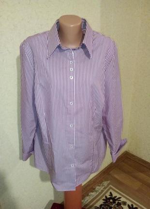 Рубашка в полоску  пог 60