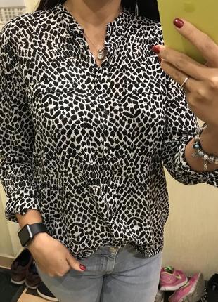 Рубашка, блуза  mango, m