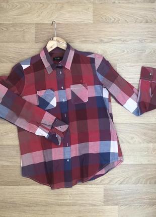 Рубашка colin's хлопковая