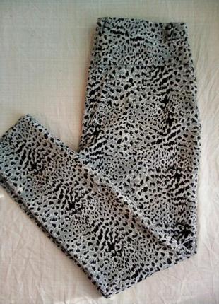Неймовірні леопардові штани бренду asos.